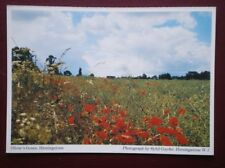 POSTCARD SUFFOLK HEMINGSTONE - OLIVERS GREEN