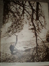 Printed art photo nude woman beach by Fred Daniels 1949 ref K