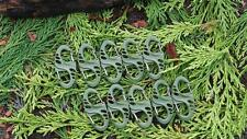 10 x GREEN DOUBLE GATED CARABINER CLIPS LOAD CARRIAGE SURVIVAL CAMPING EQUIPMENT