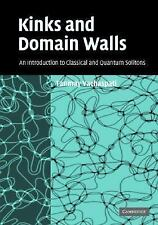 NEW - Kinks and Domain Walls: An Introduction to Classical and Quantum Solitons