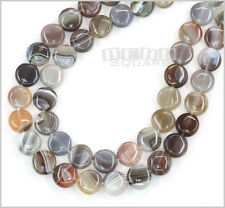 """15.5"""" Botswana Agate Flat Round Coin Beads approx.10mm #12087"""