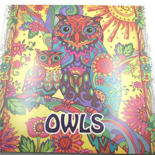 New English Adult Secret Garden OWLS Treasure Hunt Coloring Book Free shipping