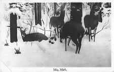 Mio Michigan view of deer in snow among trees real photo antique pc (Y7344)