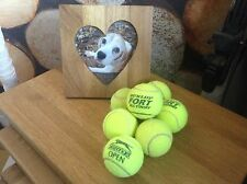 15 Used Tennis Balls - Dog Toys, Games, All Washed, 10% to Dog Charity, Freepost