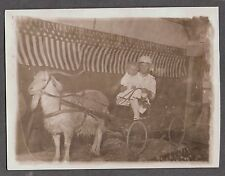 VINTAGE RPPC MONTANA GOAT CARRIAGE 4TH OF JULY USA FLAG OLD PHOTO PC POSTCARD