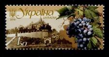 Traube der Rebsorte Cabernet Sauvignon. Weinbau. 1W. Ukraine 2010