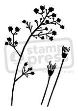 A7 'Wild Flowers' Unmounted Rubber Stamp (SP001708)