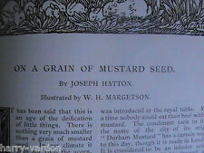 Mustard History Durham Clements Keens Garlick Hill Rare Antique Old Article 1892