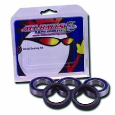 Suzuki SV650 1999 to 2002 Rear Wheel Bearings & Seals Kit, By AllBalls Racing