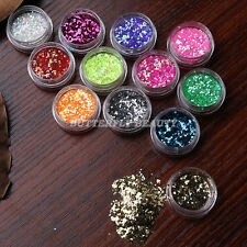 12 Colors Nail Art Tips Tiny Hexagon Glitter Powder Decoration Polish Kit UV Gel