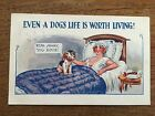 c1925 Postcard Comic Seaside Humour posted from Withernsea East Yorkshire Dog
