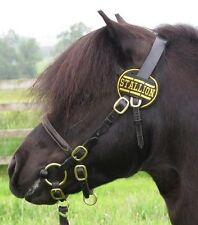 SMALL Stallion Bridle Disc SHETLAND WELSH SEC A or Small Pony 8cm