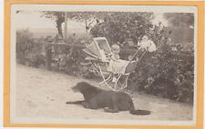 Real Photo Postcard RPPC - Baby in Buggy w/ Dog Cat and Bird Houses