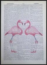 Vintage Fenicottero Rosa Amore Cuore Dizionario Stampa Pagina Da Parete, Arte