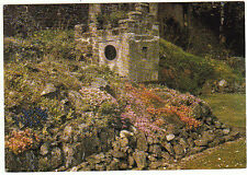 Unused Postcard Dorset, Shrine & Rockery Flowers, Abbey ruins Shaftsbury