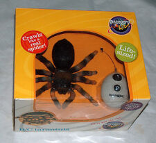 NEW Discovery Kid Egg Remote Control RC Tarantula Mexican Redknee Spider Toy NIB