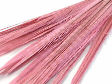 "50 Pieces - 20-22"" Light Pink Long Ringneck Pheasant Tail Wholesale Feathers ..."