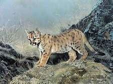 Charles Frace' Ready for Adventure Cougar Cat Wildlife S/N Limited Edition