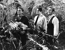 "LAND OF THE GIANTS  8X10"" PHOTO  #E1527"