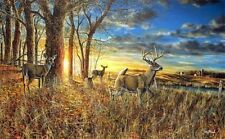 Jim Hansel Out For the Evening Encore Deer Print  18 x 10.5
