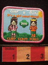 Maryland Patch Girl Scout ~ Camp Sandy Pines 69Y2