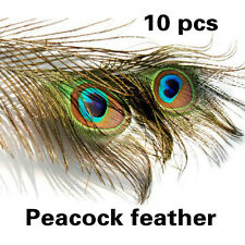 10 Peacock Eye Tail Feather For Accessory DIY Masquerade Decoration Party Dress