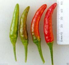 Pepper, Rooster Spur (Capsicum annuum) ORGANIC-30 Seeds-Mississippi heirloom !