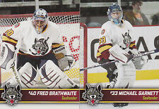 2006/07 AHL Chicago Wolves Team Issued Set One Night Stadium Giveaway
