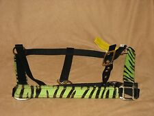 LIME GREEN Zebra Print Nylon Horse Halter with Padded Nose - New Horse Tack