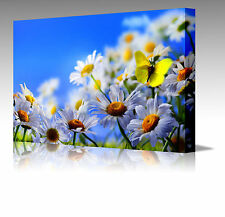 """Yellow Butterfly & Daisies Flowers Large 16x12"""" Framed Canvas Art Picture Print"""