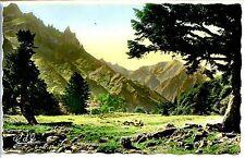 CP 63 PUY-DE-DÔME - Vallée et Gorges d'Enfer au pied du Sancy