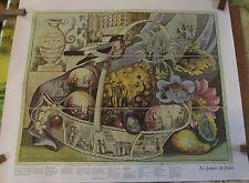 ANCIEN JEU DE L'OIE LE PANIER DE FRUITS   67x54cm