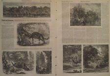 THE AMAZON RIVER SOUTH AMERICA JAGUAR TRAVEL & ADVENTURE HARPER'S WEEKLY 1871