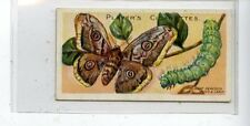 (JC9577-100)  PLAYERS,BUTTERFLIES & MOTHS,GREAT PEACOCK MOTH,1904,#40