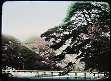 GLASS MAGIC LANTERN SLIDE ARASHIYAMA NEAR KYOTO C1920 JAPAN JAPANESE PHOTO