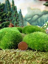 Miniature Moss Rocks  8 pieces Natural Accents Dollhouse 1189-187
