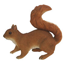 Vivid Arts - REAL LIFE WOODLAND ANIMALS - Red Squirrel