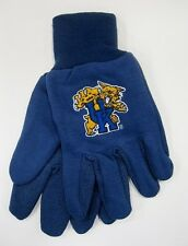 Kentucky University Wildcats College Sport Utility Gloves