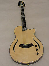 Giannini Nashlyn Series GNSL-S 12 String Thin Line Acoustic Electric Guitar Blem