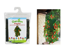 """Garden Bugs"" Hanging Planter 25x45cm Ideal for Flowers, Herbs & Strawberries"