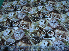 1 Yard Quilt Cotton Fabric - Spectrix Giordano Owls of Wonder Packed