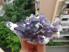 Purple and Green Octahedral Fluorite cluster on Matrix *China