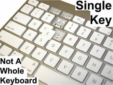 Apple Wired Keyboard A1243 Replacement Single Key with Hinge OEM (Type H or F)