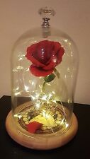 Beauty and the Beast rose lamp light mothers day gift wedding centre disney red