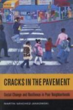 Cracks in the Pavement : Social Change and Resilience in Poor Neighborhoods...