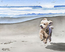 Apricot POODLE at the Beach Dog Watercolor Art Print Signed by Artist DJR w/COA