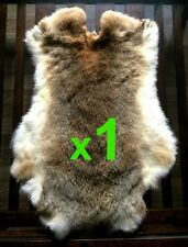 1 x Wild Woodland Rabbit Skin Fur Pelt Tanned for; animal dummy, training, TR10