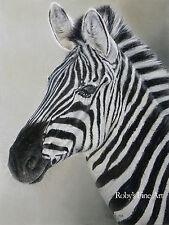 "Zebra African Wildlife Art Print ""All Ears"" 5x7 Giclee by Artist Roby Baer PSA"