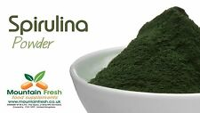 Organic Spirulina Powder Blue-Green Algae Superfood Supplement 25g FREE UK Post