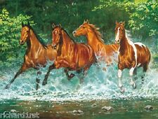 Jigsaw puzzle Animal Horse Cascade Run 750 piece NIB